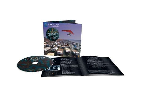 A Momentary Lapse Of Reason - Pink Floyd - Musik - PLG - 0190295044091 - October 29, 2021