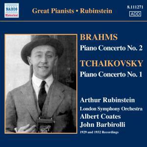 Piano Concertos - Brahms / Tchaikovsky - Musik - NAXOS - 0747313327126 - January 21, 2008