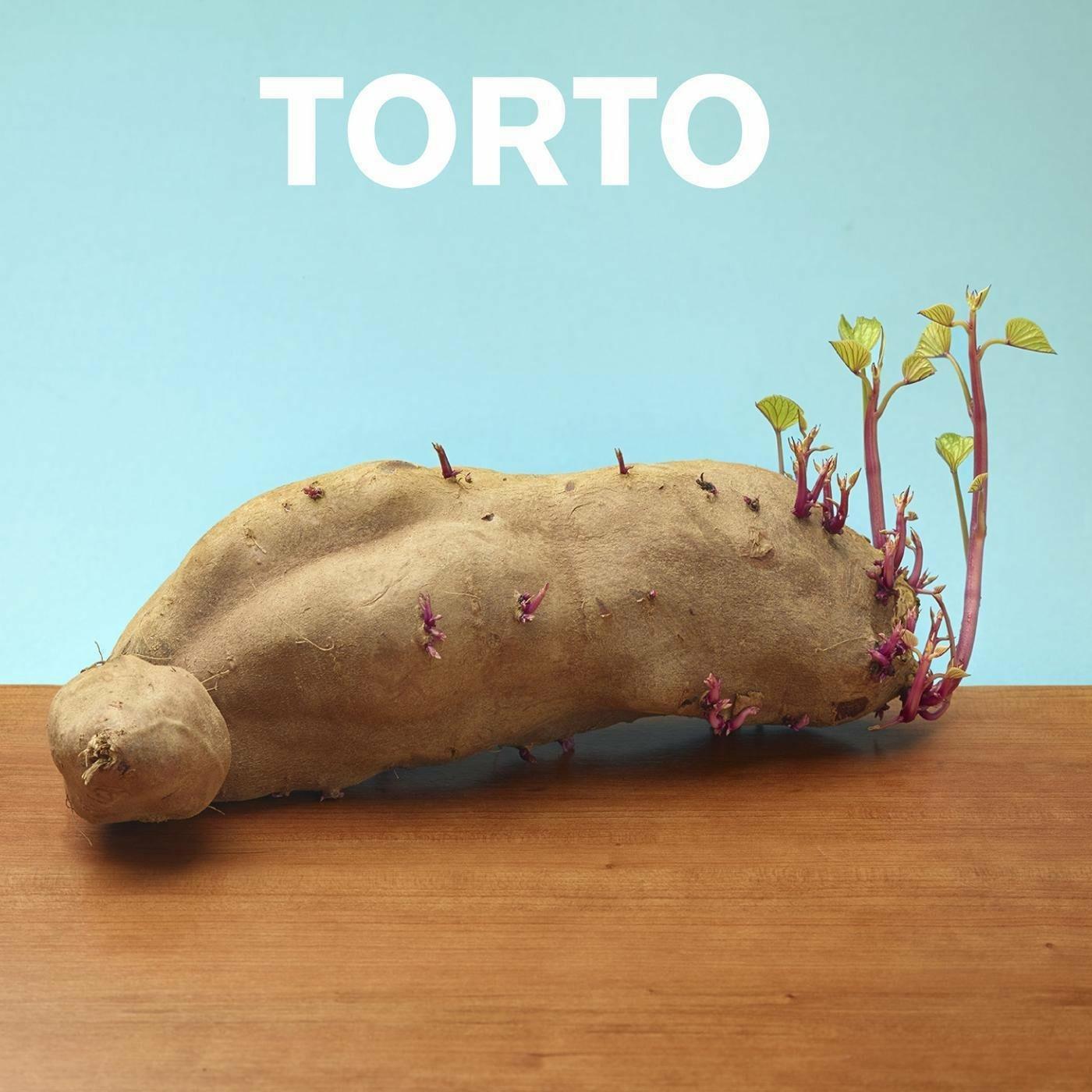 Torto - Torto - Musik - LOVERS & LOLLYPOPS - 0045635877221 - April 24, 2014