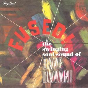 Fused - Dave Davani - Musik - BIGBEAT - 0029667421225 - June 20, 2002