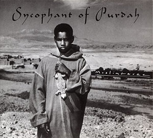 Sycophant of Purdah - Muslimgauze - Musik - KORM PLASTICS - 0753907371321 - June 9, 2015