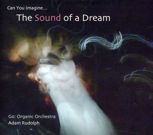 Go: Organic Orchestra - Can You Imagine the Sound - Adam Rudolph - Musik - METAR - 0638977101422 - December 13, 2011