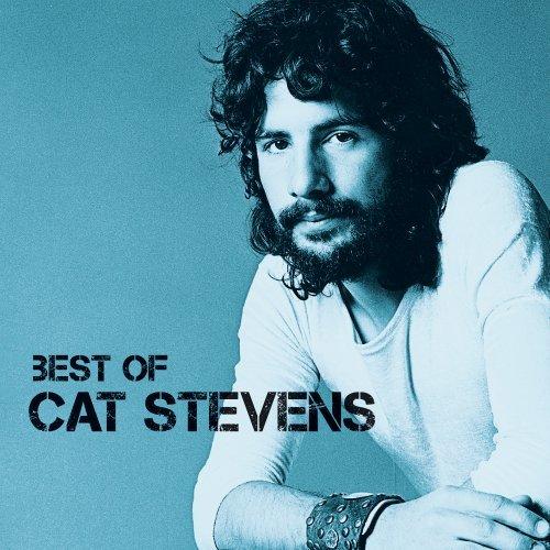 Icon - Cat Stevens - Musik - A&M - 0600753330425 - July 25, 2011