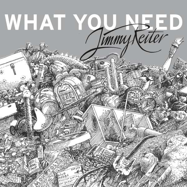What You Need - Jimmy Reiter - Musik - Pogo Pop - 0885150701508 - September 11, 2015