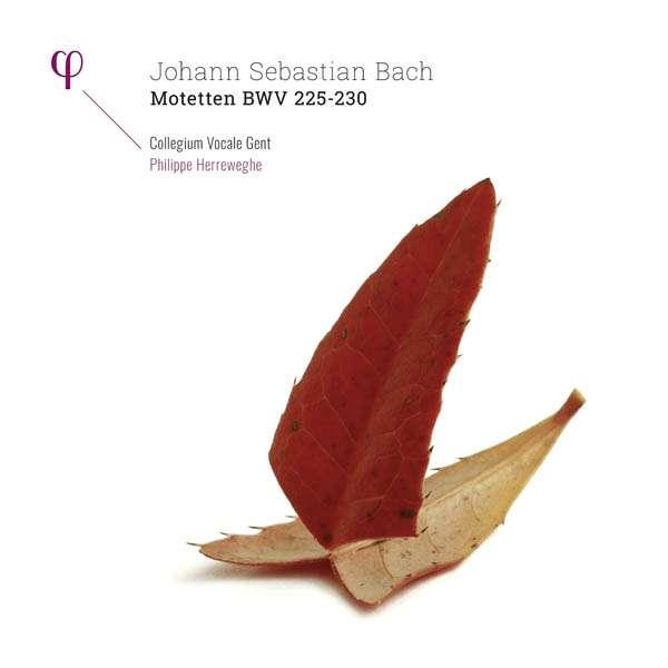 Motetten Bwv 225-230 - J.S. Bach - Musik - PHI - 5400439009509 - 9. mars 2017