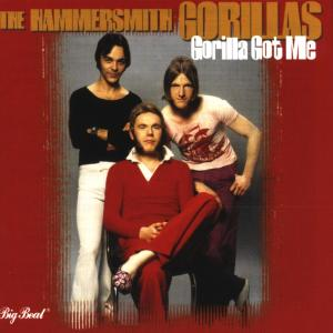 Gorilla Got Me - Hammersmith Gorillas - Musik - BIG BEAT - 0029667418522 - May 17, 1999