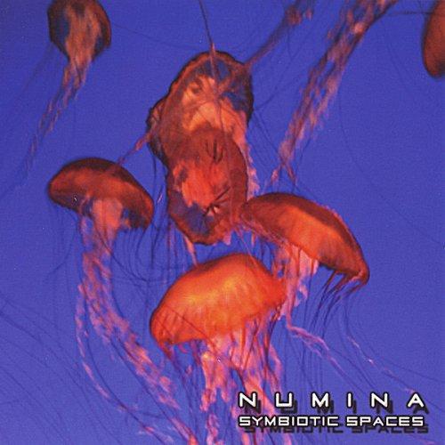 Symbiotic Spaces - Numina - Musik - CD Baby - 0029817999529 - June 24, 2008