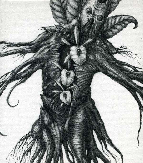 Iv: Mandragora - Botanist - Musik - FLENSER - 0029882880630 - February 19, 2013