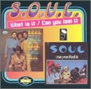 What Is It/Can You Feel It - S.o.u.l. - Musik - BGP - 0029667510721 - July 29, 1996