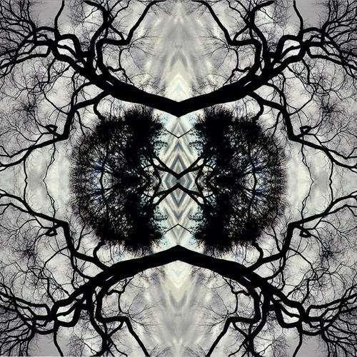 Sonic Mandala Go: Organic Orchestra - Adam Rudolph - Musik - METAR - 0638977101729 - September 17, 2013