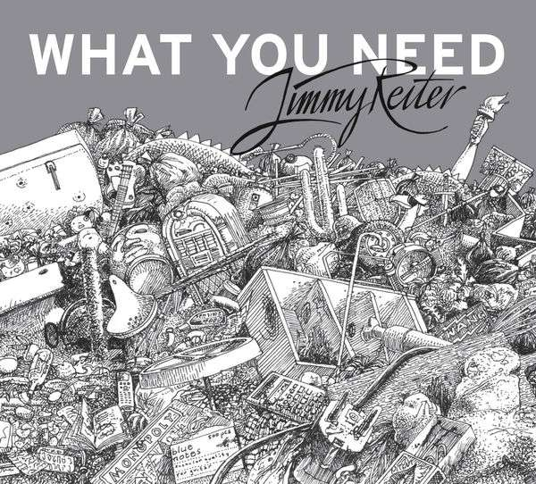 What You Need - Jimmy Reiter - Musik - Pogo Pop - 0761203599912 - August 9, 2019
