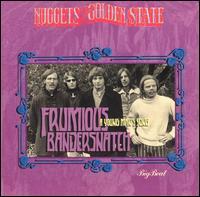 A Young Man's Song - Frumious Bandersnatch - Musik - BIG BEAT - 0029667416924 - May 24, 1996