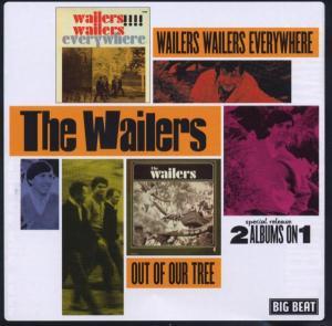 Wailers Wailers Everywher - Wailers - Musik - BIGBEAT - 0029667422925 - June 19, 2003