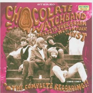 Melts In Your Brain Not On Your Wris - Chocolate Watchband - Musik - BIG BEAT RECORDS - 0029667424929 - March 28, 2005