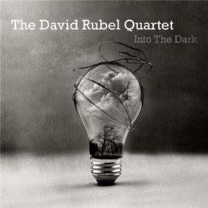 Into the Dark - David Rubel Quartet - Musik - DAVID RUBEL - 0753677585010 - November 5, 2013