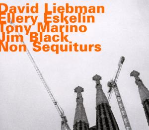Non Sequiturs - Liebman, David / Ellery Eskelin - Musik - HATOLOGY - 0752156071020 - April 12, 2012