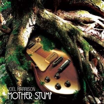 Mother Stump - Joel Harrison - Musik - CUNEIFORM REC - 0045775039022 - 13/5-2014