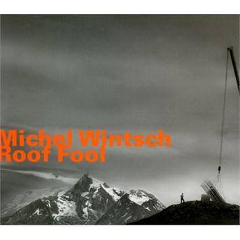 Roof Fool - Michael Wintsch - Musik - HATOLOGY - 0752156073024 - May 12, 2015
