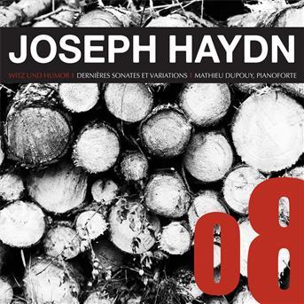 Last Sonatas & Variations - Haydn / Dupouy,mathieu - Musik - HERISSON - 3770002538036 - 8/10-2013
