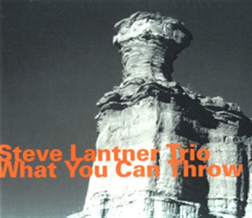 What You Can Throw - Lantner / Morris / Gray - Musik - HATOLOGY - 0752156064121 - January 10, 2008
