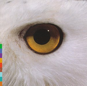 Gula Gula - Mari Boine - Musik - EMARCY - 0044001778124 - 21/3-2005