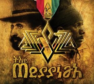 The Messiah - Sizzla - Musik - OP VICIOUS POP - 0054645198127 - June 28, 2013