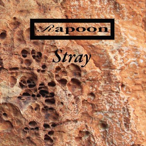 Stray - Rapoon - Musik - SLMO - 0753907788129 - February 27, 2012