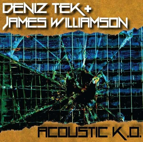 Acousitc K.O. - Deniz Tek - Musik - LEOPARD LADY RECORDS - 0752830476202 - March 30, 2017