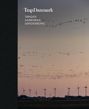 Trap Danmark: Tønder, Aabenraa, Sønderborg - Trap Danmark - Bøger - Trap Danmark - 9788771810219 - March 16, 2021