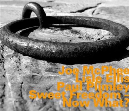 Sweet Freedom? Now What? - J. Mcphee - Musik - HATOLOGY - 0752156060222 - July 28, 2008
