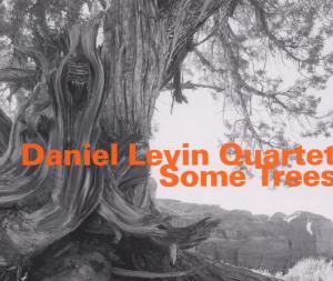 Some Trees - Daniel -Quartet- Levin - Musik - HATOLOGY - 0752156063223 - July 27, 2006