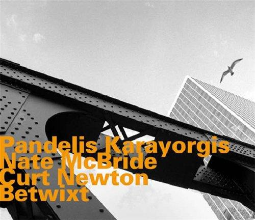 Betwixt - Karayorgis / Mcbride / Newton - Musik - HATOLOGY - 0752156065227 - May 7, 2008