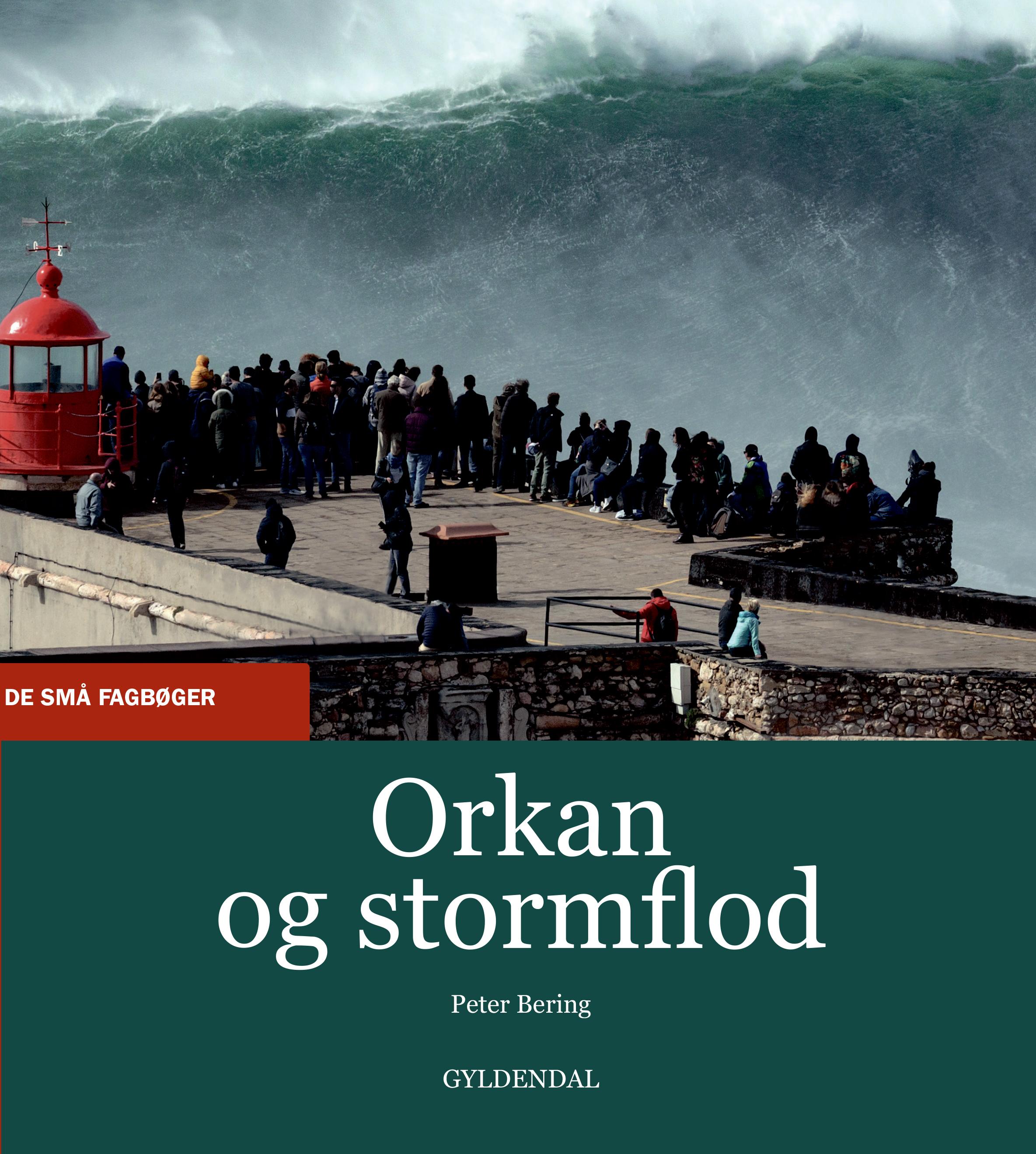 De små fagbøger: Orkan og stormflod - Peter Bering - Bøger - Gyldendal - 9788702309263 - 25/11-2020
