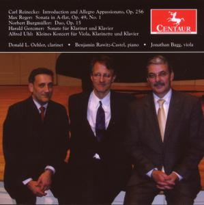 Introduction & Allegro Apassionato Op 256 - Reinecke / Reger / Oehler / Rawitz-castel / Bagg - Musik - Centaur - 0044747285320 - October 30, 2007