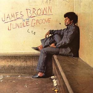 In the Jungle Groove - James Brown - Musik - POLYDOR - 0044007617328 - 12/6-2003