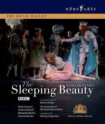 Sleeping Beauty - P.i. Tchaikovsky - Film - OPUS ARTE - 0809478070375 - September 24, 2009