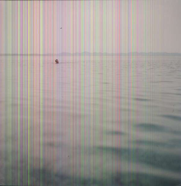 Swim - Blue Cranes - Musik - CUNEIFORM REC - 0045775036410 - 4/6-2013