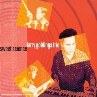 Sweet Silence - Larry Goldings - Musik - SONY MUSIC - 0753957208424 - July 2, 2002