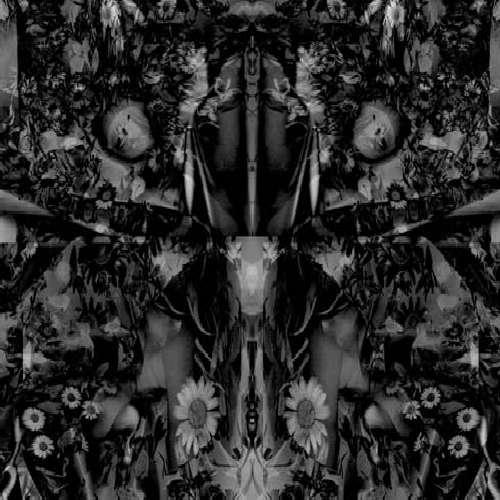 Songs of Flowers & Skin - Aidan Baker - Musik - BETA-LACTAM RING - 0753907158427 - July 6, 2010