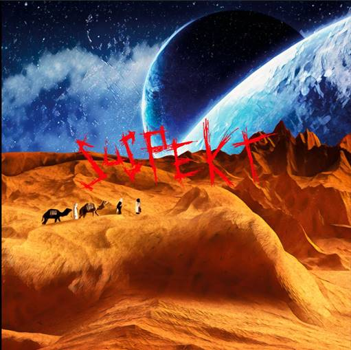 Sindssyge Ting - Suspekt - Musik - Universal Music - 0602508634505 - 14/12-2020