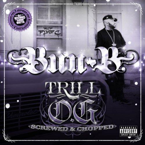 Trill O.g. Swisha House Remix - Bun B - Musik - RPAL - 0044003103566 - 10/8-2010