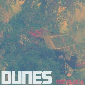 Noctiluca - Dunes - Musik - POST PRESENT MEDIUM - 0724101235610 - 1/3-2012