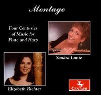 Montage: Four Centuries of Music for Flute & Harp - Nielsen / Boccherini / Rossini / Jongen / Ibert - Musik - Centaur - 0044747287621 - 27/11-2007