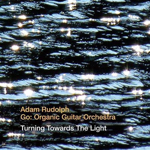 Turning Towards the Light - Adam Rudolph - Musik - CUNEIFORM REC - 0045775040622 - 2/10-2015