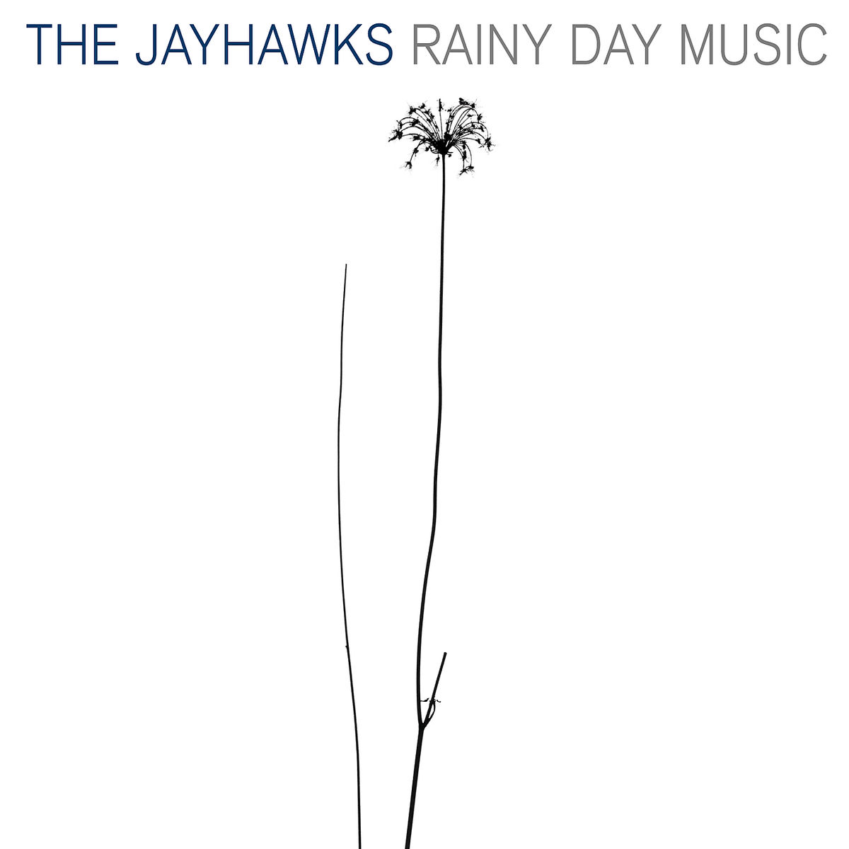 Rainy Day Music - Jayhawks - Musik - Pid - 0044007713624 - 7/4-2003