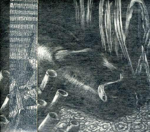Deluge & Sunder - Daniel Menche - Musik -  - 0753907148626 - January 15, 2007