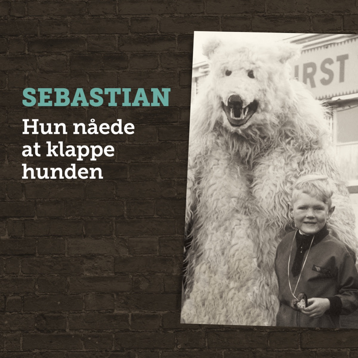 Hun Nåede At Klappe Hunden - Sebastian - Musik -  - 7332181092639 - 26/4-2019