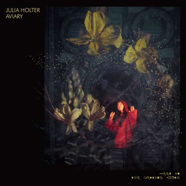 Aviary - Julia Holter - Musik - DOMINO - 0887828041718 - 26/10-2018
