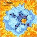 Chronometers - Muffins - Musik - CUNEIFORM REC - 0045775500720 - 29/3-1995