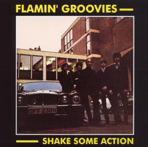 Shake Some Action - Flamin' Groovies - Musik - AIM - 0752211101723 - February 24, 2020